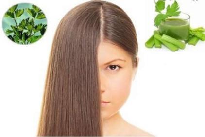 manfaat seledri untuk rambut green angelica penumbuh rambut cepat